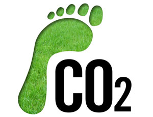 Reducing Your Carbon Footprint With Reusable Bags