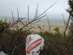 New York Community Bans Plastic Bags