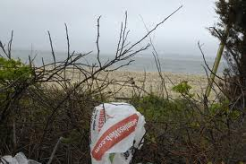 South Hampton Bans Plastic Bags