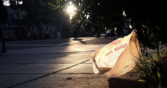 The goal of this Bill 405 was to prevent the use of single use plastic bags that are responsible for litter that is not just unsightly, but also the cause of countless wildlife deaths every year.