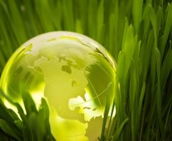 5 Reasons Sustainability is Important for Your Next Promotional Product