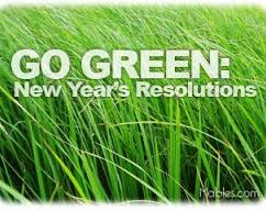 How to Be Green in 2014