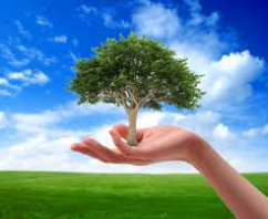 What is Green Marketing and Is It Right for Your Brand?