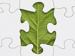 Leaf Puzzel Piece