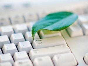 leaf keyboard