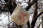 March Madness! Why Using Single Use Plastic Bags Is Just Plain Crazy