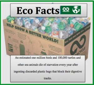 eco fact - litter