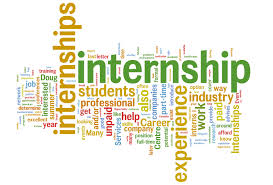 Looking for a Summer Internship? Why Not Go Green?