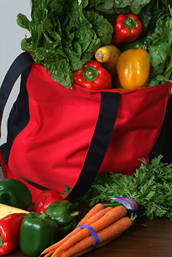 Get The Facts on Reusable Grocery Bags!