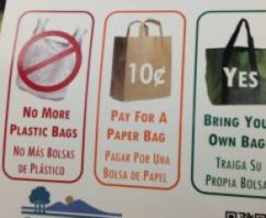 How Likely is it That California Will Become the First State to Ban Single Use Plastic Bags?