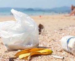 Bag Ban in Puerto Rico…What Your Business Needs to Know
