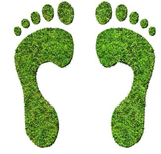 5 Ways to Go Eco-Friendly with Your Tradeshow Giveaways