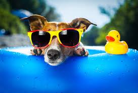 3 Ideas for Summer Marketing Initiatives