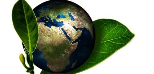 Eco-Friendly Ideas for Trade Shows