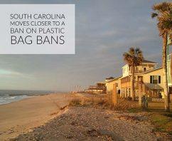 South Carolina Moves Closer to a Ban on Plastic Bag Bans
