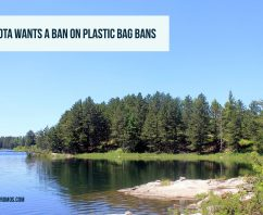 Why Minnesota Wants a Ban on Plastic Bag Bans