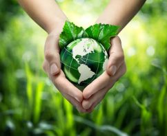 A Guide to Living an Eco-Friendly Life