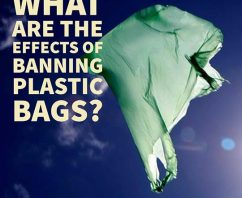 What Are The Effects of Banning Plastic Bags?