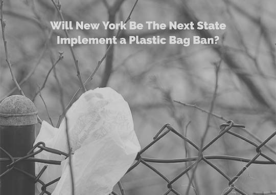 Will New York Be The Next State to Implement a Plastic Bag Ban?