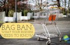 Massachusetts Bag Ban Bill H 2121. What YOUR Business Needs to Know Now