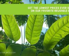 Get Our Favorite Reusable Bags at The Lowest Prices Ever Offered!