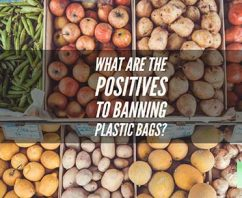 What Are The Positives to Banning Plastic Bags?