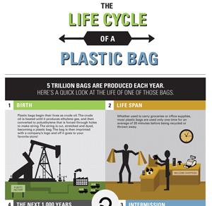 Lifecycle of a Reusable Plastic Bag