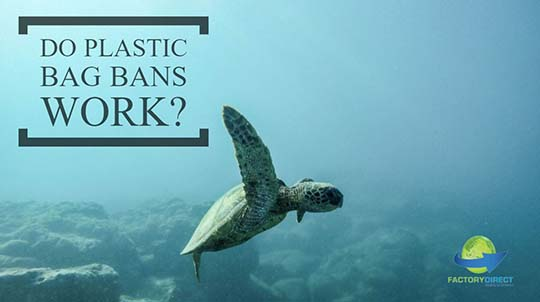 Do Plastic Bag Bans Work? Let's See What The Science Says
