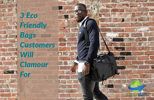 3 Eco Friendly Bags Customers Will Clamour For