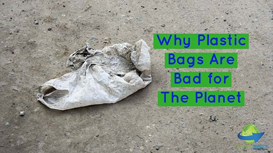 Why Plastic Bags Are Bad for The Planet