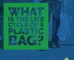 What is The Life Cycle of a Plastic Bag?
