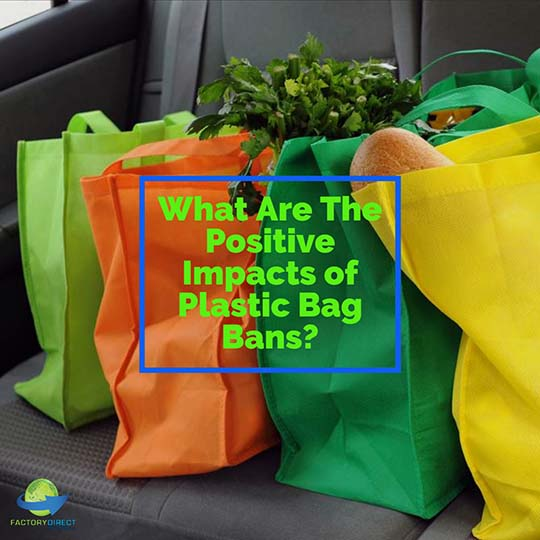 What Are The Positive Impacts of Plastic Bag Bans?