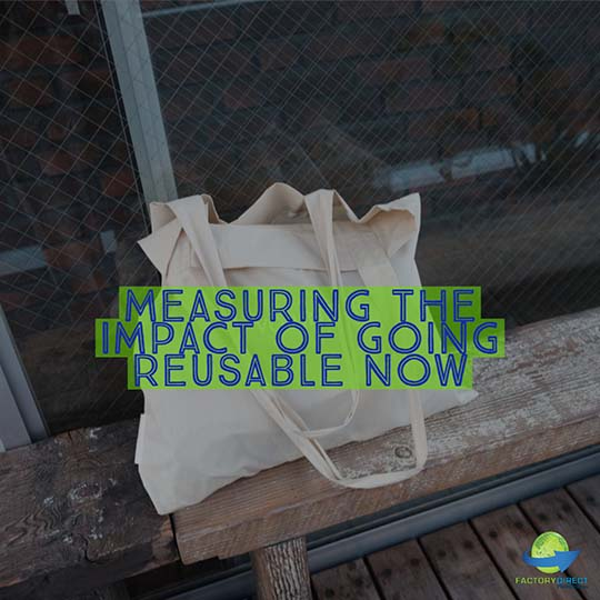 How Many Plastic Bags are Saved by Using One Reusable Bag?