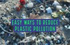 Six Ways to Stop Plastic Pollution Madness