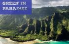 States Ban the Bag: Hawaii – What IS The Law of The Land?