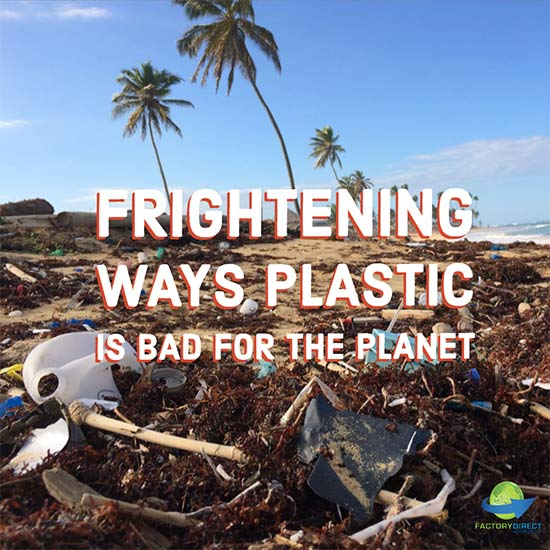 4 Frightening Ways Plastic Bags Are Bad for the Planet