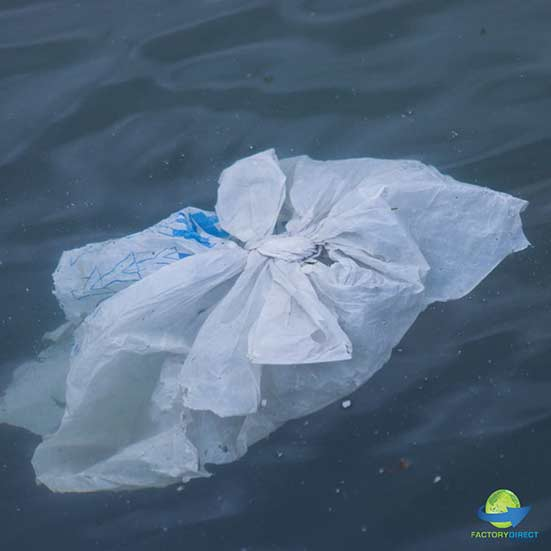 What Are Microplastics and Why Do You Need to Know?