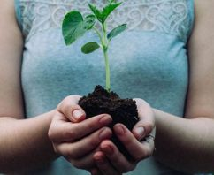 8 Creative Ways to Celebrate Earth Day from Your Home Office