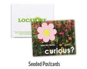 Seed paper Postcards
