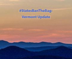 Will Vermont Bag Ban Still Move Forward During COVID-19?