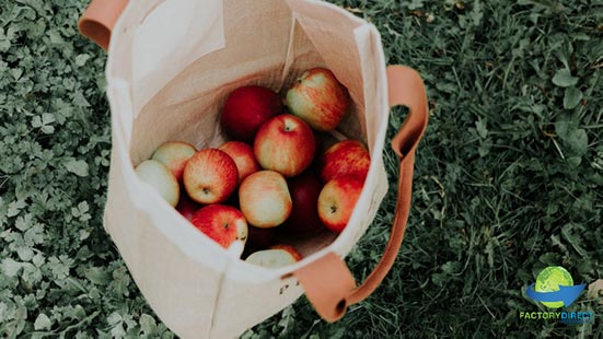 How Your Business Can Celebrate Plastic Free July