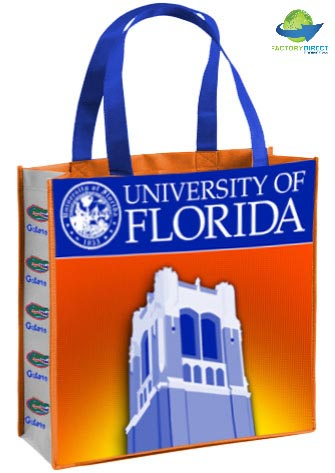 Teachers and Student Organizations, Celebrate YOUR School Spirit with a Discount on Reusable Bags