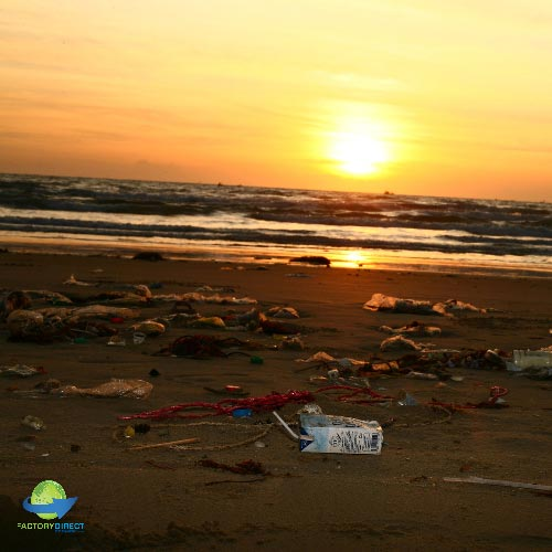 University of California Scraps Single Use Plastic Bags