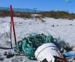 With S864 New Jersey Poised to Enact Toughest Plastic Bag Ban Law