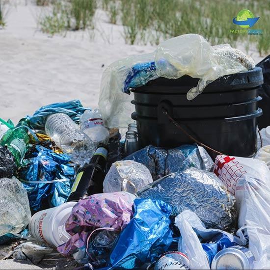 Ditch Single-Use Plastic