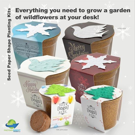 Holiday Seed Planting Kits