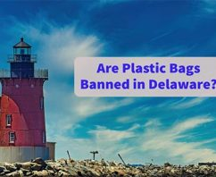Are Plastic Bags Banned in Delaware?