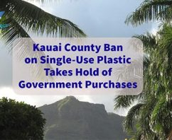 Kauai County Ban on Single-Use Plastic Takes Hold of Government Purchases